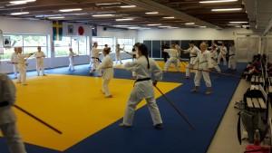 Besök hos karateklubben 3